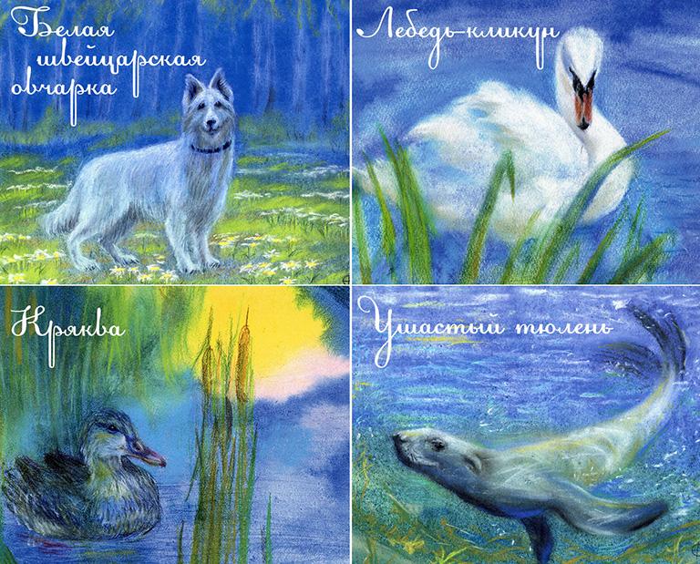 Открытки для мира животные